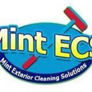 Mint Exterior Cleaning Solutions