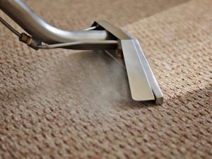 Hands Cleaner Carpets